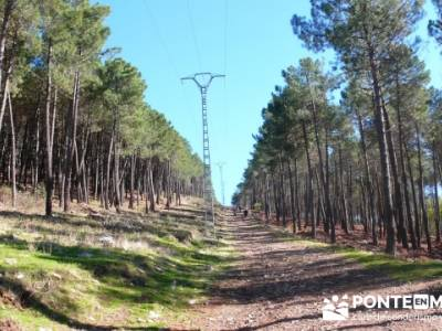 Castañar de la Sierra de San Vicente - Convento del Piélago;excursiones en madrid y alrededores
